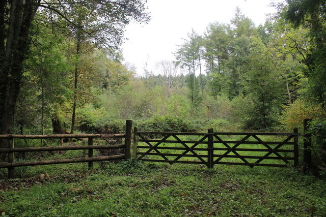 Gateway into Woolly Wood