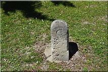 TL5337 : Boundary stone by N Chadwick