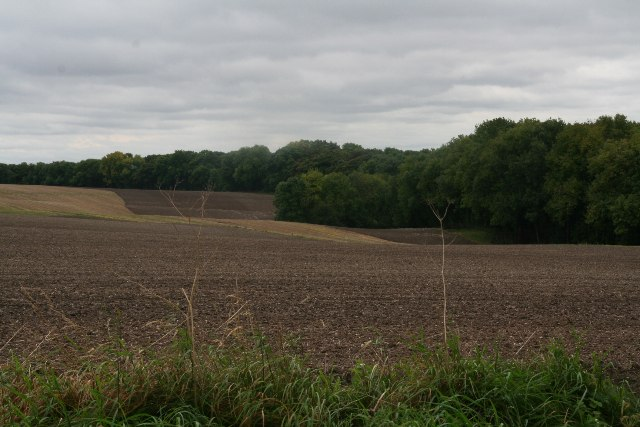 Elsham Hill from Wold Road