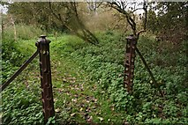 TA0114 : Old iron gate posts on a footpath from Worlaby to Middlegate Lane by Chris
