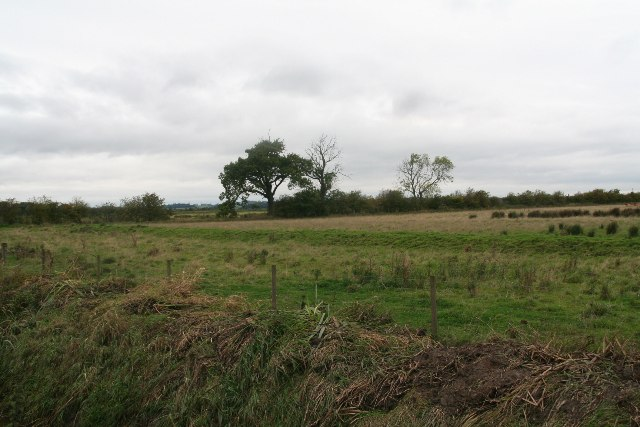 Bank and grazing marsh by Carr Lane, Bonby Carrs