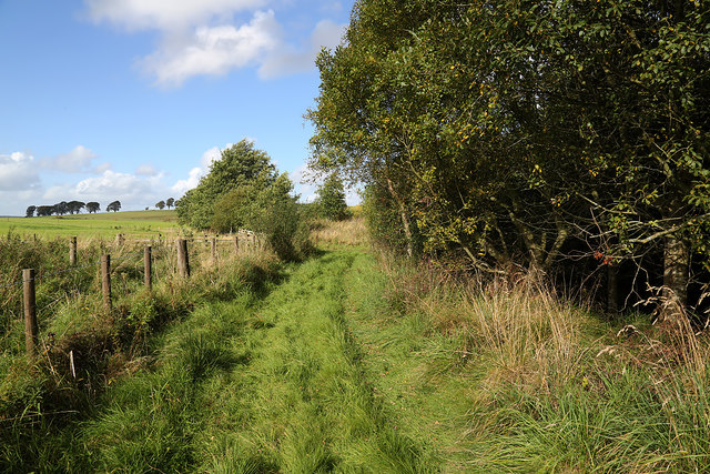 A grass track at Boghouse