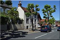 TL5338 : 81, High St by N Chadwick