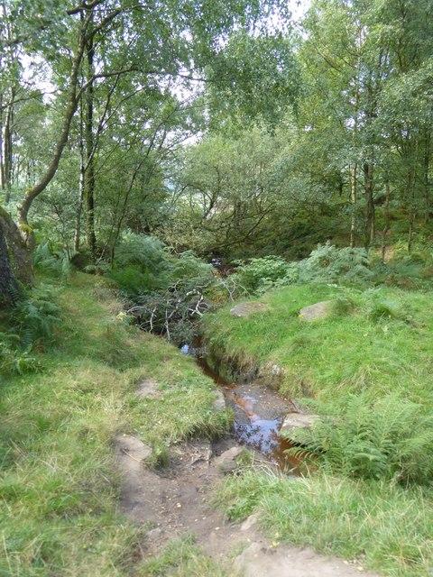 Stream in woods at the north of Froggatt Edge