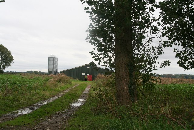 Poplars and farm buildings off Carr Lane, Worlaby