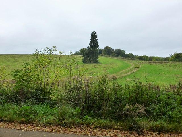 Cross Britain Way and Jubilee Way near Belvoir Castle