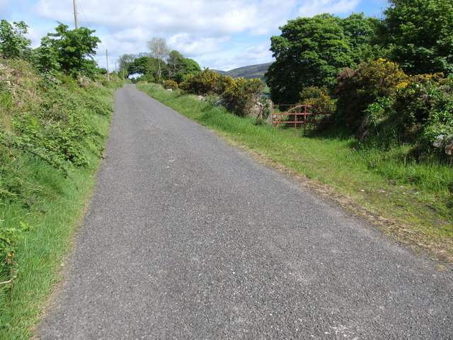 The ascending Piedmont-Upper Jenkinstown Road in the Townland of Slievenaglogh