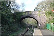 SX4563 : Station Road Bridge by N Chadwick