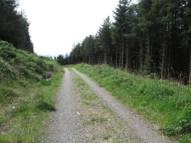 View South along the Annaloughan forestry Road