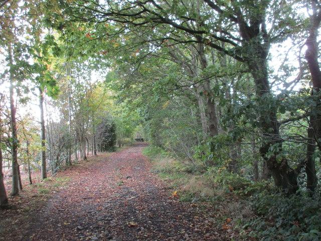 Approaching Blackergreen Lane
