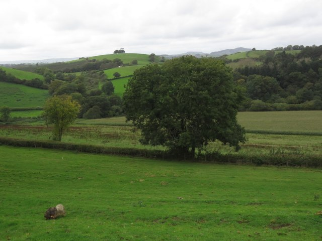 View towards Hincknowle Hill from Marlpits Farm