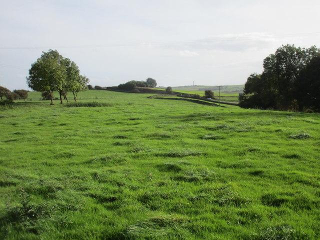 Fields below Near Coates Farm