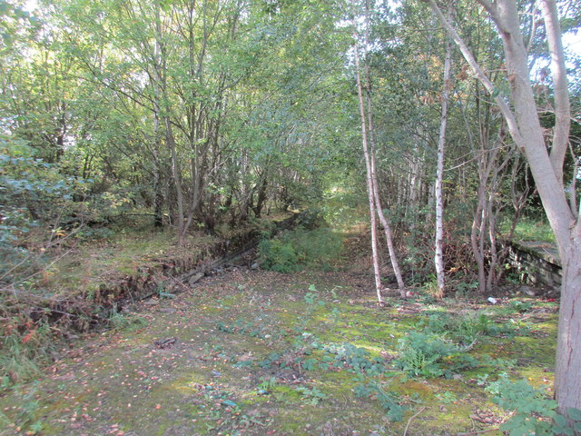 Remains of Woodhead line platforms, Penistone Station