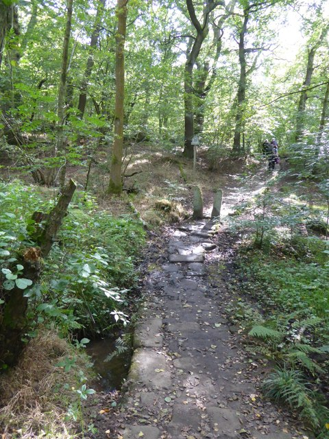 Simple bridge for path in Horse Hay Coppice