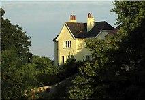 SX9265 : House at Babbacombe by Derek Harper