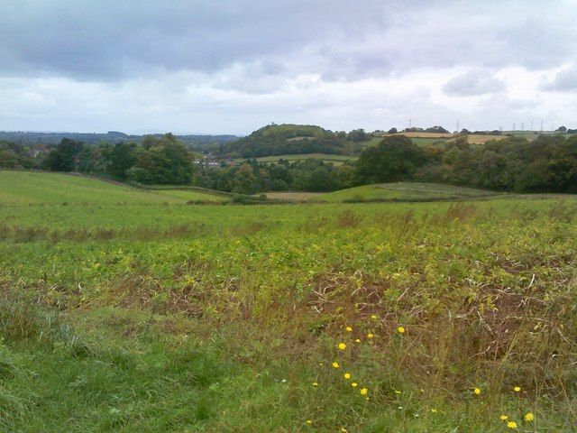 Wombourne Path View