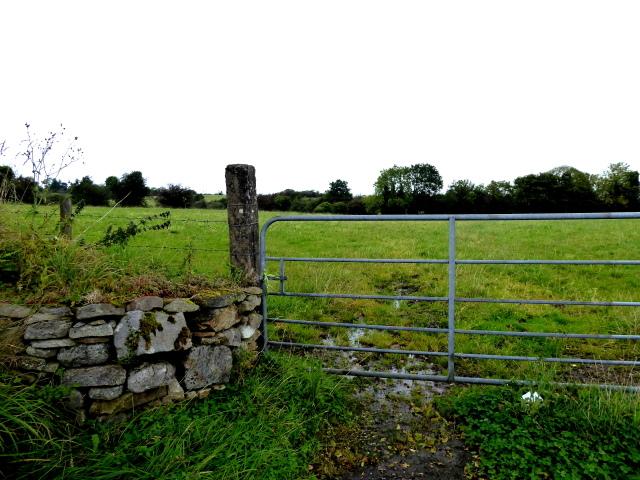 Wall and gate, Kirlish