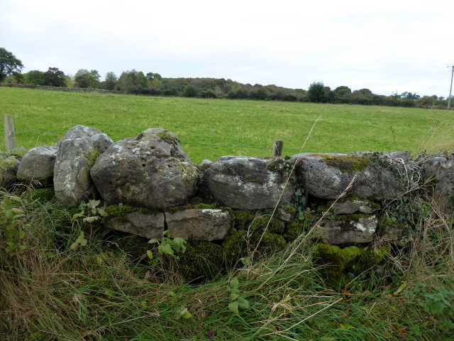 Dry stone wall, Kirlish