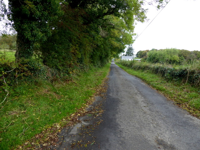 Kirlish Road