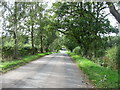 NY4635 : Minor road approaching Unthank End by David Purchase