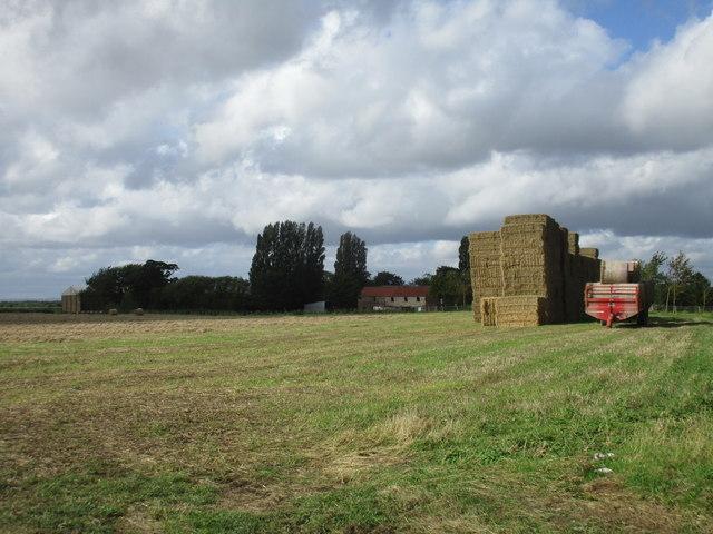 Harvest over, Hempholme