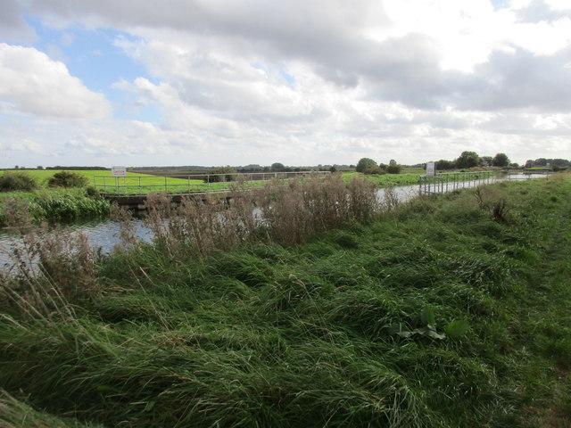 The River Hull (New Cut)