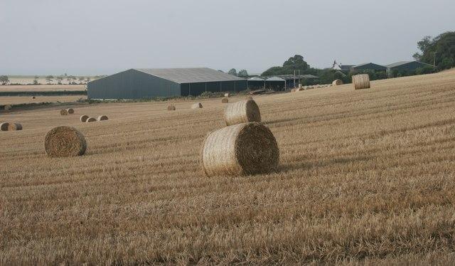 Cuttlebrae Farm, Clochan