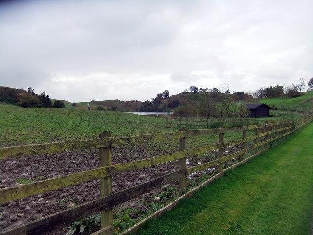 Near Bigland Tarn