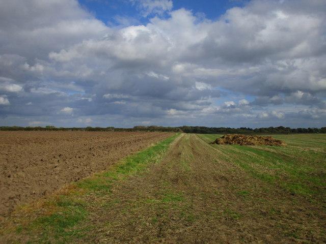 Footpath to Burshill