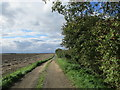 TA0946 : Roadway to Low Baswick Farm by Jonathan Thacker