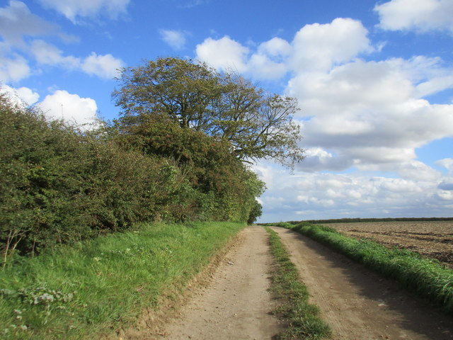 Track to Heigholme Lane