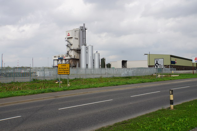 Wainwright plant by Hallen Marsh Junction