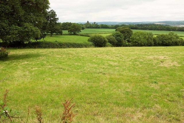 Farmland east of Ashill