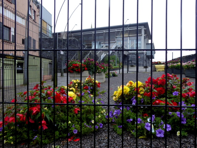 Floral display along Bridge Street, Omagh