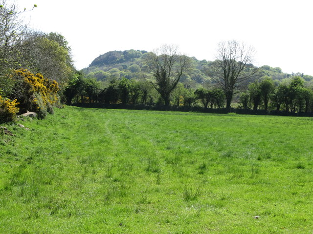 The northern slopes of the wooded Trumpet Hill