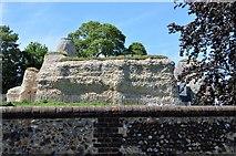 TL5338 : Walden Castle by N Chadwick