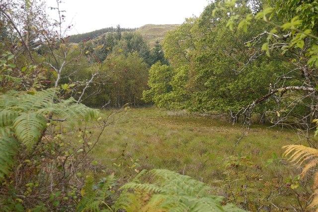 Moss of Achnacree