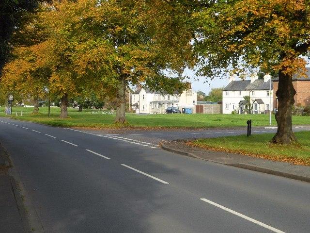 Autumn trees on Poolbrook Road