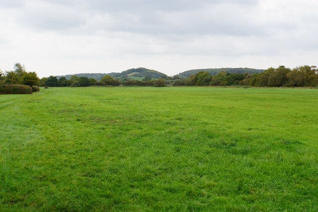 Green field between the motorways