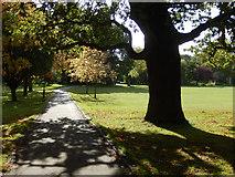TQ2992 : Arnos Park by Stephen McKay