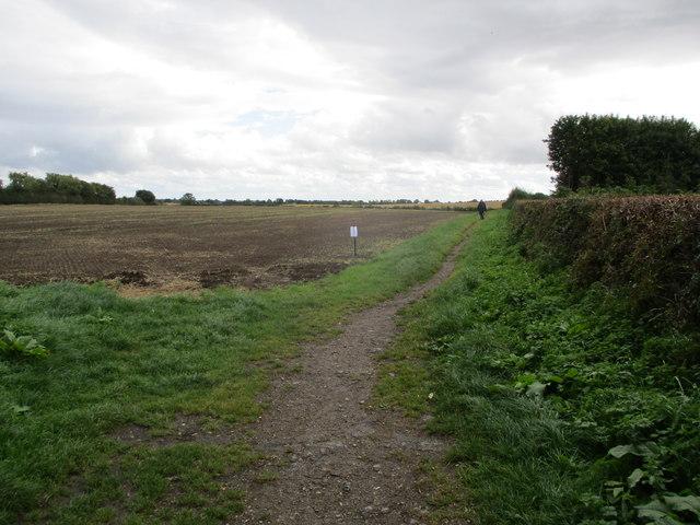 Field  edge  path  south  of  Dalton