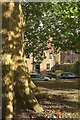 SX9292 : Southernhay East, Exeter by Derek Harper