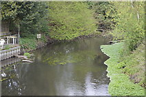 TQ0586 : Fray's River by N Chadwick