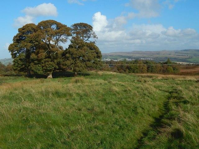 The site of Carman farmstead