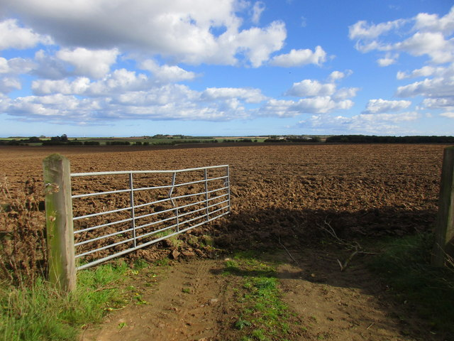 Gate and ploughed field