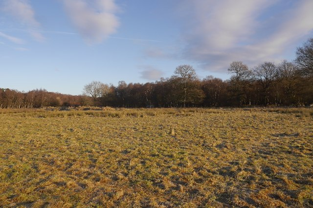Fulwood Moss