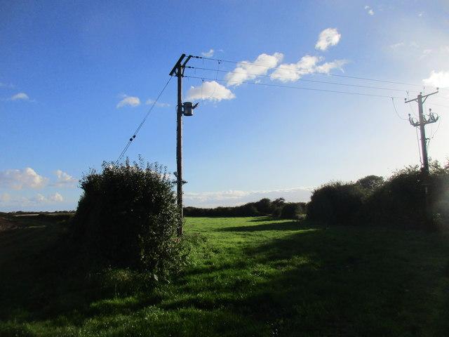 Narrow grass field at Upton