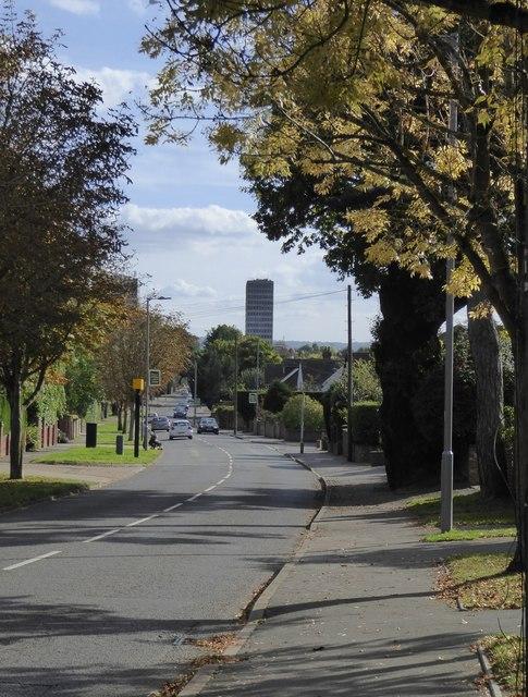 Traps Lane: view south