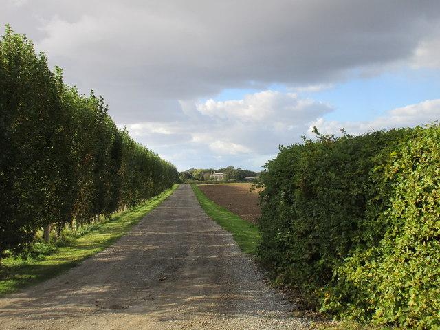 Roadway to Ulrome Grange