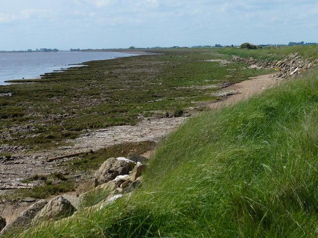 Humber shoreline at Winsetts Bank